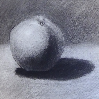 Charcoal drawing of a fruit.