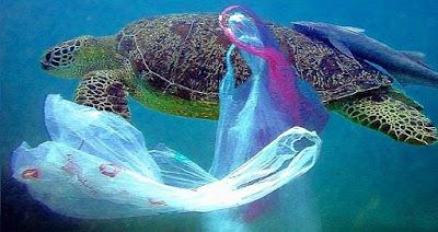 Contaminación bolsas plástico