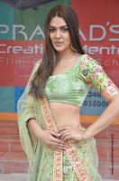 sakshi chowdary 64.jpg