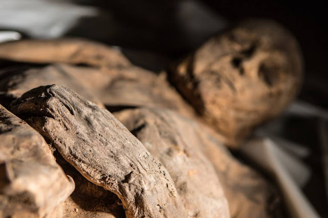 17th Century strain of smallpox retrieved from partial mummified remains of Lithuanian child