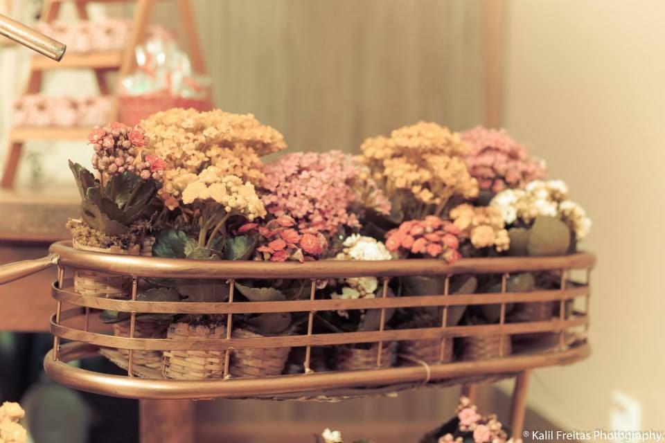 festa-infantil-vintage-picnic-flores