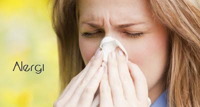 aneka-macam-alergi-tubuh