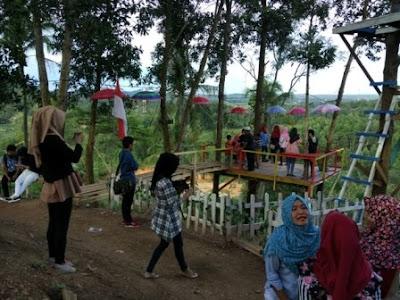 Wisata Bukit Pangonan Suasana diatas bukit