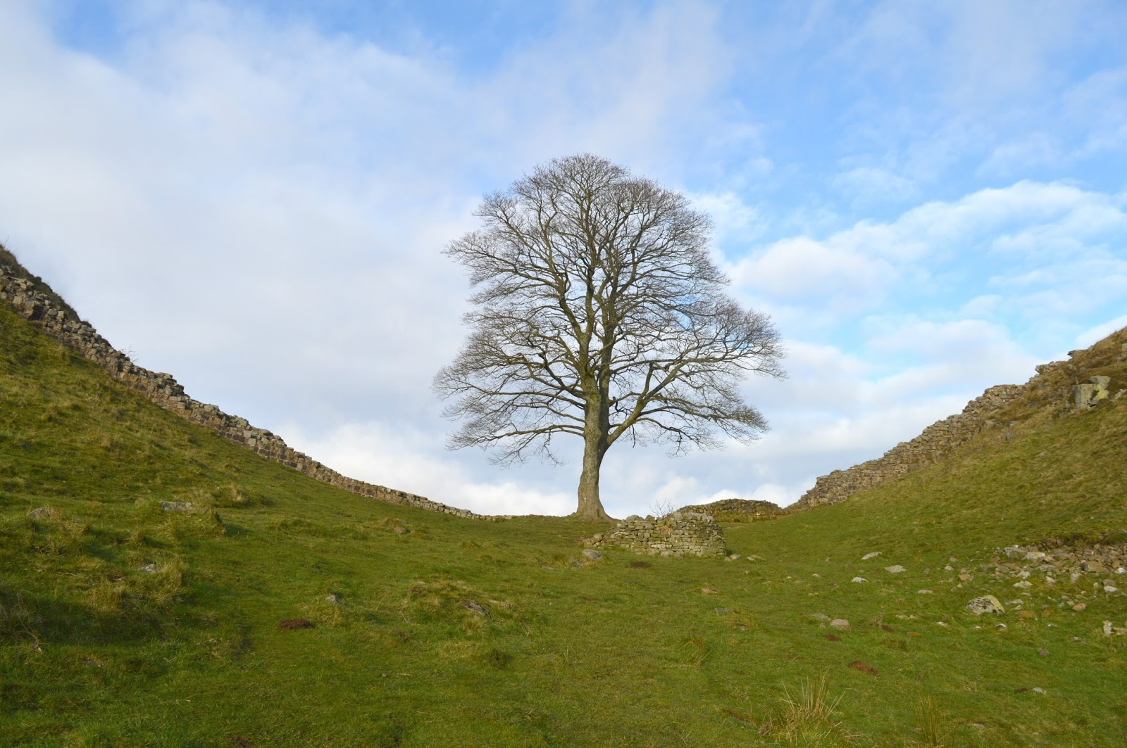 Walking Hadrian's Wall Winter - Sycamore Gap
