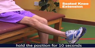 Seated Knee Ekstensi exercise