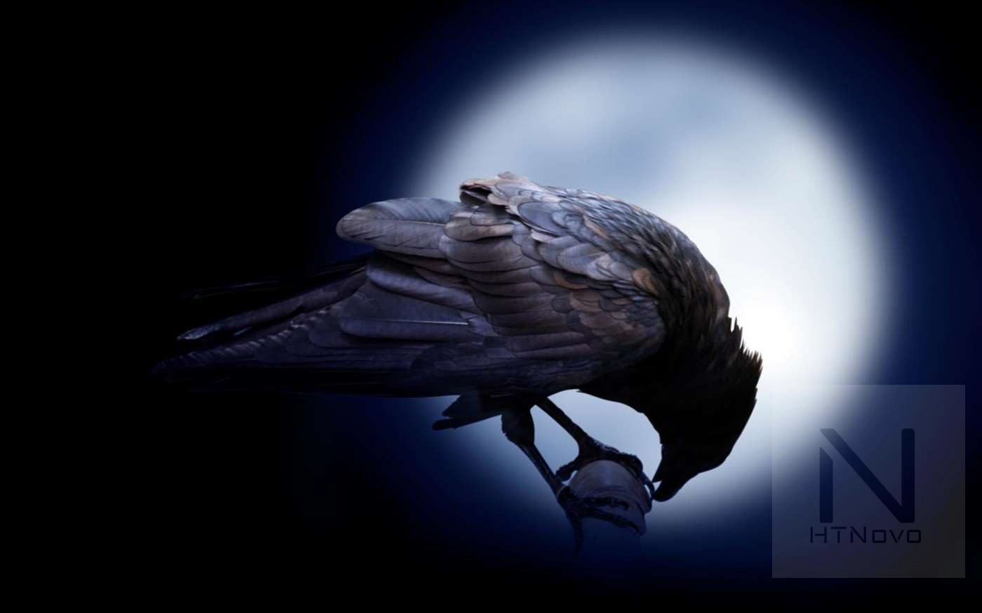 Download Call of the Raven