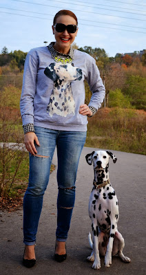 animal graphic sweater