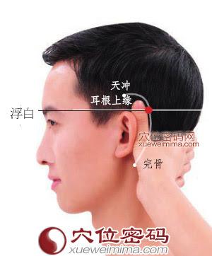 浮白穴位 | 浮白穴痛位置 - 穴道按摩經絡圖解 | Source:zhentuiyixue.com