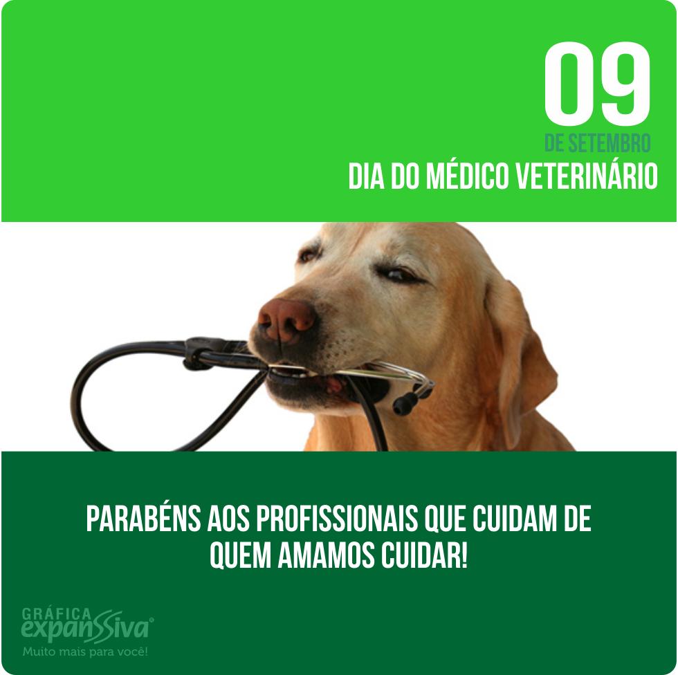 Homenagem pelo dia do Médico Veterinário, dia do veterinário