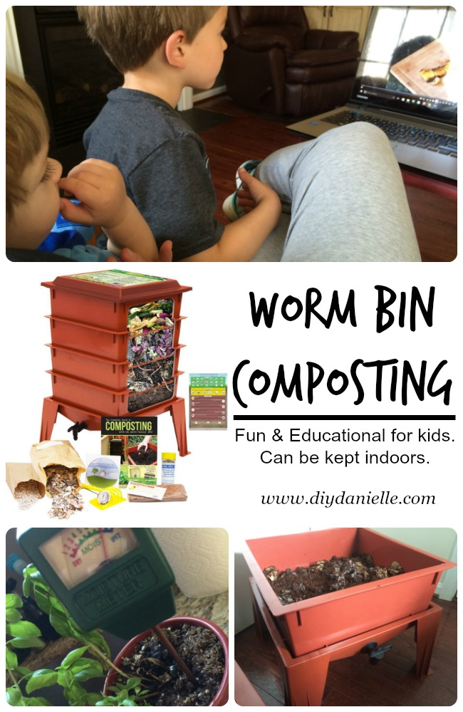 Intro to Worm Bin Composting