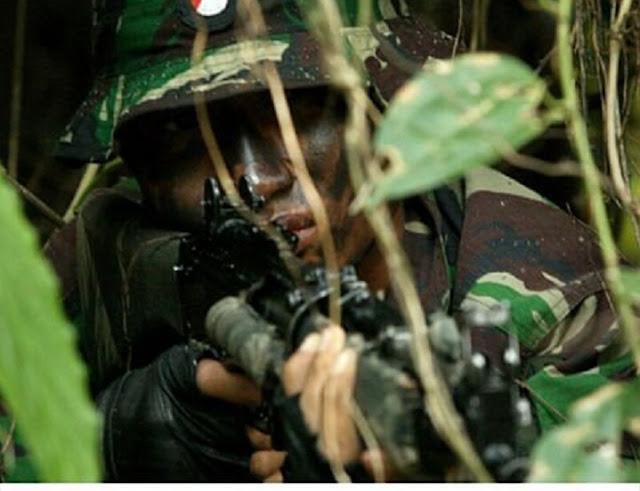 Dor...! Dor...!...Bak RAMBO, Prajurit Sutarmono Robohkan 3 Tentara Belanda di Irian. Heroik...!