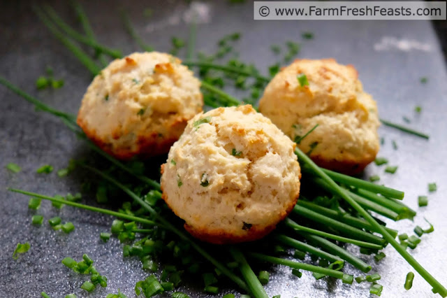 Creamy ricotta cheese and fresh chives are the highlight of these savory muffins. Adding potato flakes to the batter, and using bacon grease takes the flavor of this quick bread over the top.