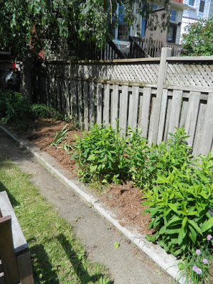 Toronto Riverdale back yard garden cleanup after by Paul Jung Gardening Services