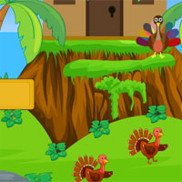 Play AVMGames Turkey Forest Es…