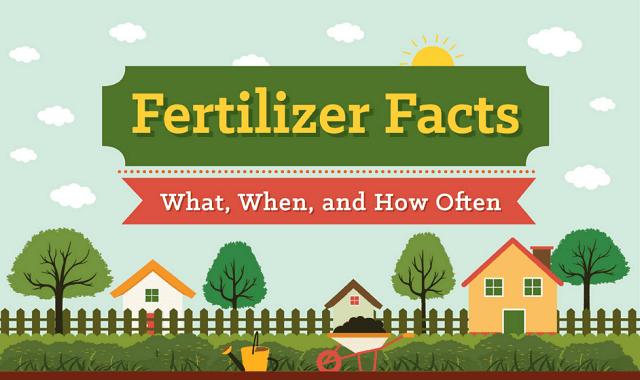 Fertilizer Facts What, When, and How Often