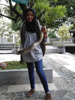 ular1.jpg