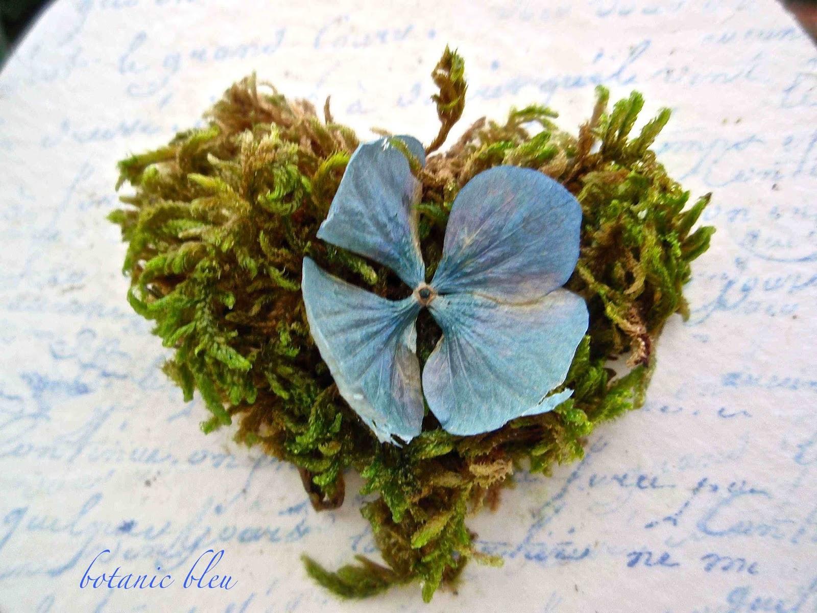 Botanic Bleu August 2013