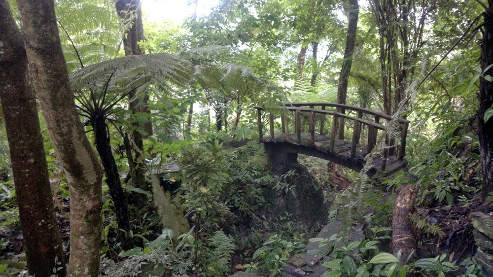 Travel plan for writers : Bara Mangwa Darjeeling