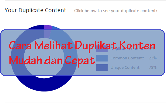 Cara Melihat Duplikat Konten Blog