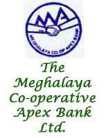 Meghalaya Co-operative Apex Bank Limited