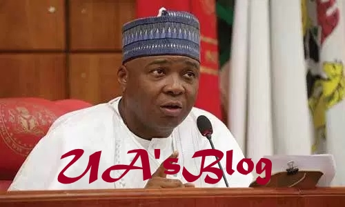 I sympathise with tribunal chairman, says Senate President