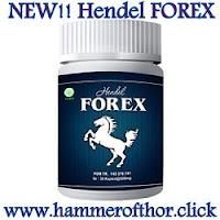 hammer of thor forex asli kuda putih