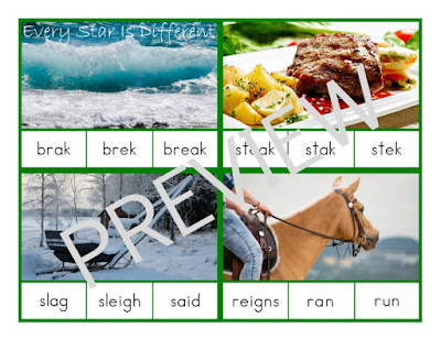 Montessori-inspired Advanced Language Easy Word Identification Clip Cards