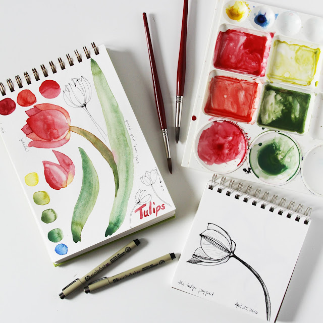 watercolor, sketchbook, painting, sketching, tulips, botanical sketchbook, Anne Butera, My Giant Strawberry