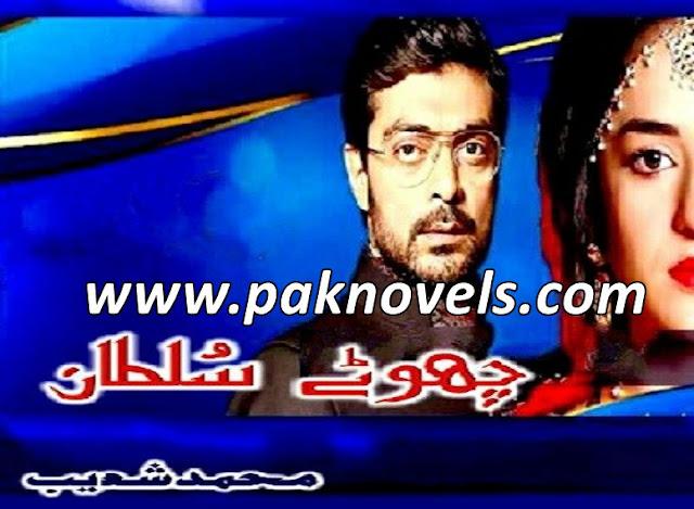 Chotay Sultan Urdu Novel By Muhammad Shoaib