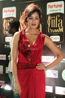Videesha in Spicy Floor Length Red Sleeveless Gown at IIFA Utsavam Awards 2017  Day 2  Exclusive 42.JPG