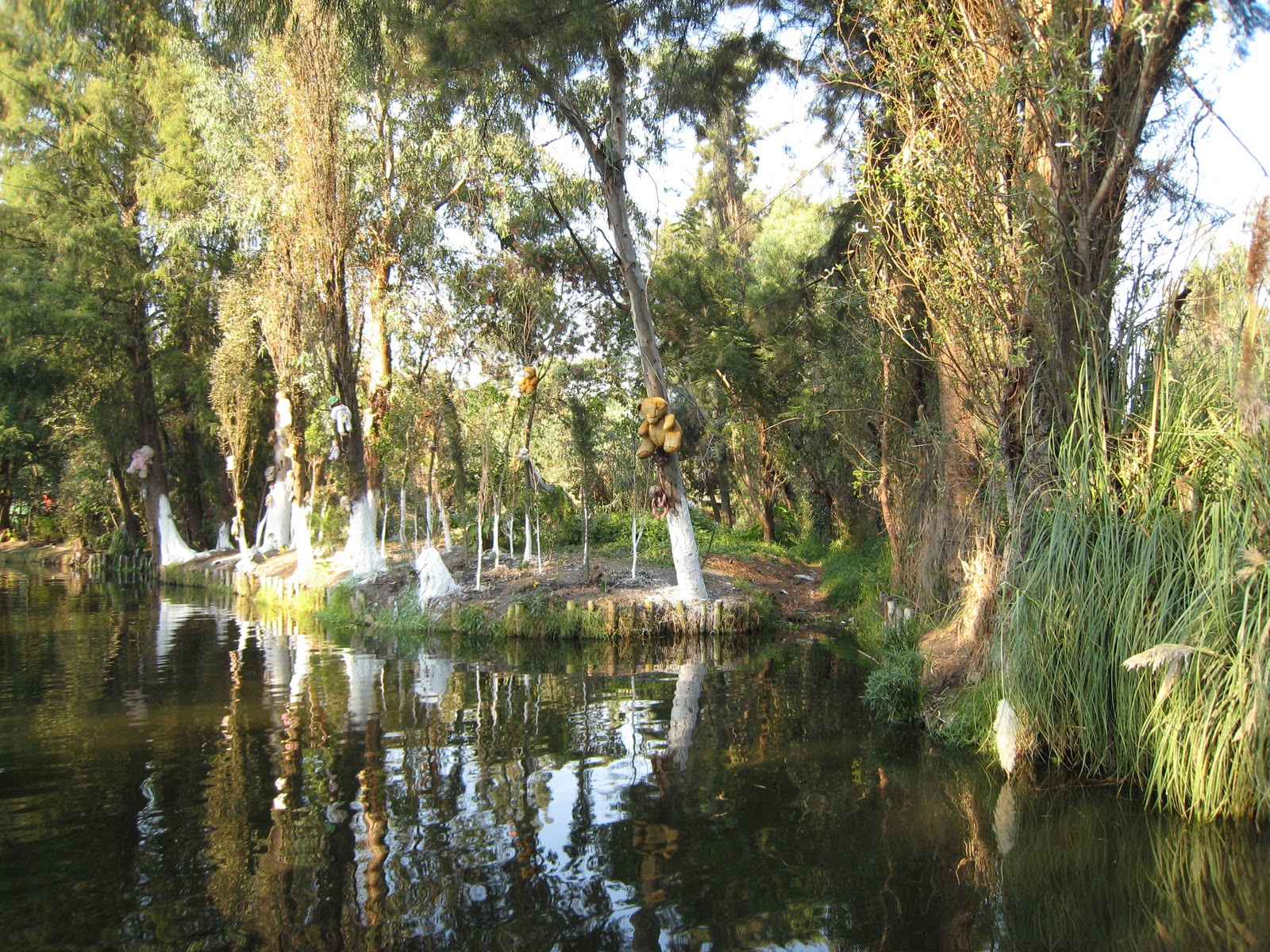 chinampas xochimilco - photo #2