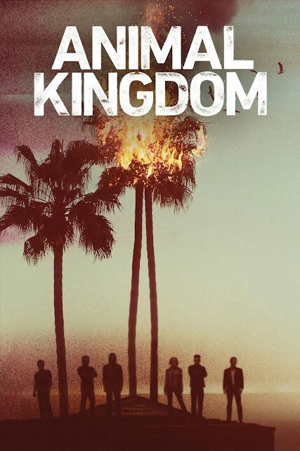 Animal Kingdom – Temporada 1
