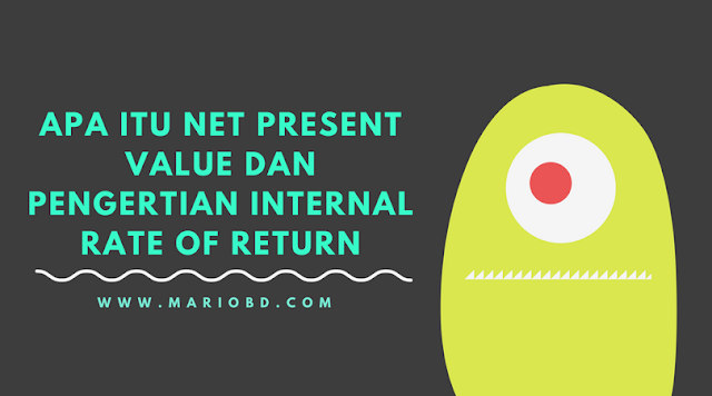 Apa Itu Net Present Value dan Pengertian Internal Rate Of Return - Mario Bd