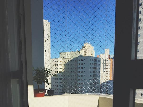 A vista do meu lugar