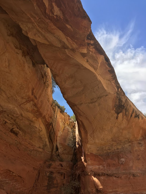 Bowington Arch Grand Staircase Escalante National Monument (GSENM), Hiking with Dogs in Utah