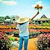 Kebun Begonia Lembang, Rute Lokasi dan Harga Tiket Masuk