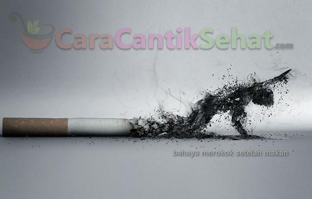 bahaya merokok sesudah makan bagi kesehatan