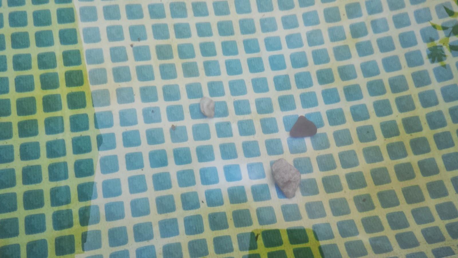Steine liegen am Poolboden