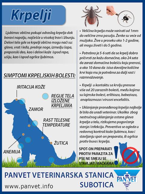 Krpelji i krpeljske bolesti kod ljubimaca - Panvet infografika