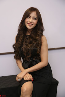 Angela Krislinzki in Transparent Black Gown at Rogue Movie Teaser Launch 1st March 2017 067.JPG