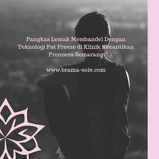 Pangkas Lemak Membandel Dengan Teknologi Fat Freeze di Klinik Kecantikan Premiera Semarang