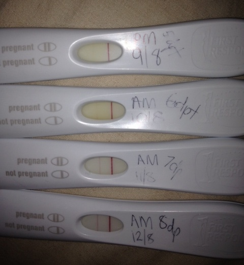 13 Dpo Symptoms Disappeared Bfp