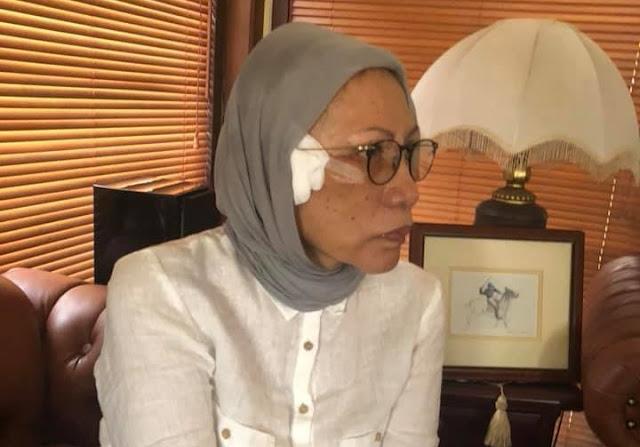 Soal Ratna Sarumpaet Dianiaya, Novel: Mentri L Biang Kerok Atas Kegaduhan Negara Ini