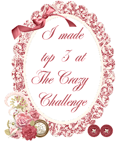 Top 3 at The Crazy Challenge!