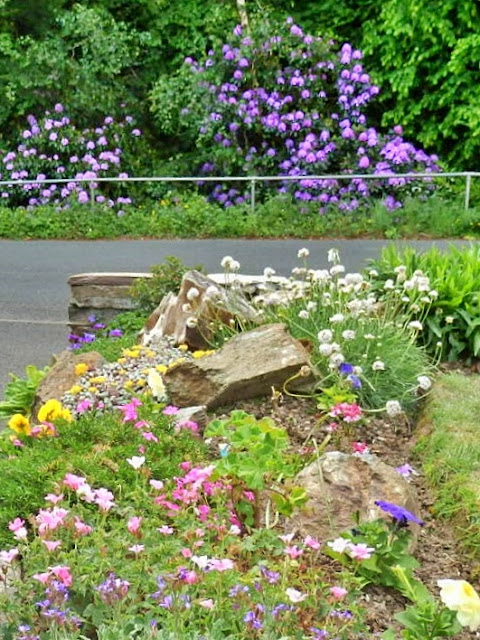 Flowers on both sides of the road, Cornwall