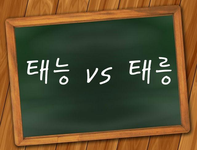 태능 태릉