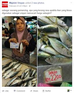 Harga Ikan Melambung  : Hobi Memancing Tumbuh Kembali  Semua sedia maklum akan kenaikkan harga ikan segara di pasaran yang semakin mengila menyebabkan AM juga mula mengambil langkah untuk memancing ikan sendiri untuk kegunaan harian.  Beberapa hari yang lepas kecoh 1Malaysia mengenai kenaikkan Harga Ikan Kembung yang cukup mengila dari rm18/kg sehingga RM25/kg di beberapa negeri di Malaysia.  Persoalannya kenapa harga ikan yang semakin hari semakin tinggi sehingga kita termenung di pasar apabila bertanyakan harga ikan hari ini? Dibawah ini AM jumpa beberapa video yang dikongsi oleh pages di facebook yang mungkin menjadi penyebab kenapa ikan di Malaysia semakin mahal.  Cabaran yang dihadapi oleh para nelayan kita di laut apabila bot-bot nelayan dari Negara asing mula melabuhkan pukat-pukat tunda mereka yang mengaut hampir keseluruhan ikan yang ada di laluan mereka.  Persoalanya  Dimana pihak yang berwajib seperti Maritim Malaysia? AM bukan ingin menyalahkan pihak berkuasa tetapi nelayan-nelayan asing semakin ganas dan bebas untuk mengambil hasil laut di Negara Malaysia ini. Oleh sebab itu, AM mula mengkaji beberapa teknik pancingan yang boleh digunakan untuk memancing di laut persisiran Negeri Kelantan.  Sebelum ini AM juga kongsikan Hobi Memancing Datang Kembali yang AM ada kongsikan beberapa teknik pancingan di laut.  Kebetulan pula harga ikan semakin mahal membuat minat dan keinginan untuk turun ke laut semakin menebal, apa yang membantut hobi memancing adalah peralatan memancing yang belum disediakan dan juga cuaca yang masih lagi tidak membenarkan bot-bot kecil untuk turun ke laut.  Sambil menunggu cuaca kembali tenang dan musim sotong mengila, AM mengambil keputusan untuk mula mengkaji beberapa teknik pancingan yang mudah dan biasa dilakukan oleh nelayan tempatan.  Nantikan perkongsian yang seterusnya dari AM untuk bacaan kita bersama.