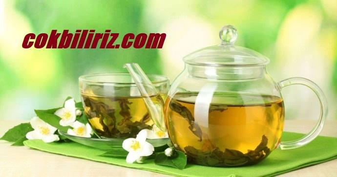 Mate Çayı ile Zayıflama