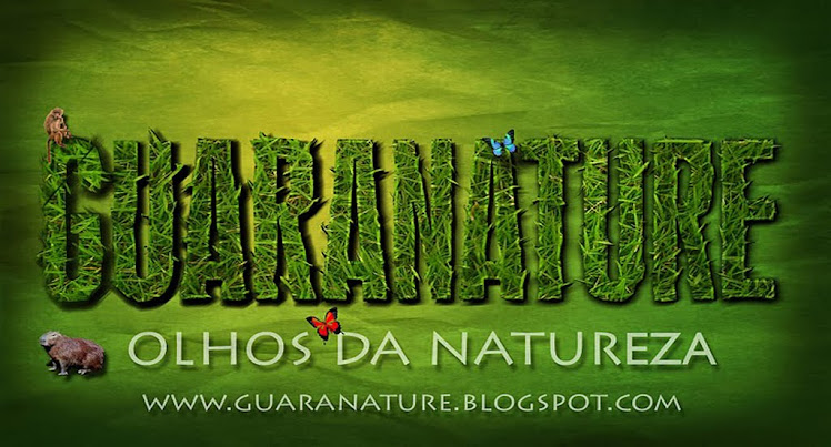 Guaranature