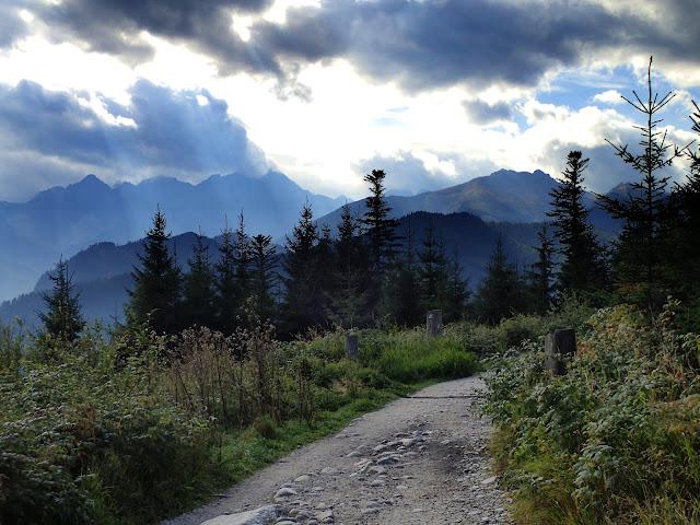 Siedlarska Droga (ścieżka z Wierch Porońca) jest naprawdę banalna